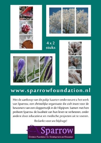 Cards flyers set 2 Sparrow Foundation
